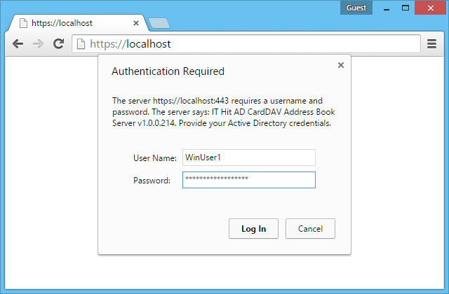 Provide your domain credentials in the the login dialog.